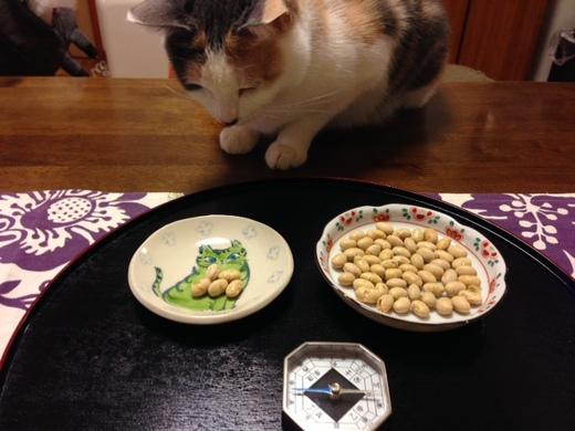2015年節分ハナの豆.JPG