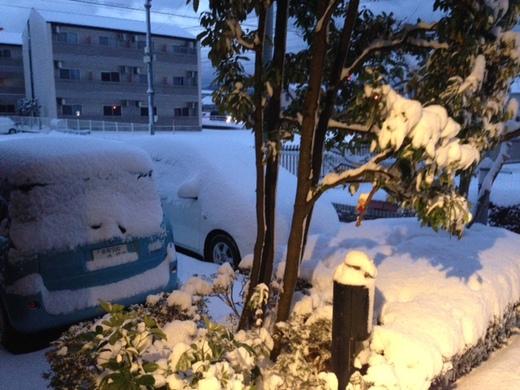 2015年雪1.JPG