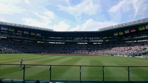 2017 甲子園.JPG