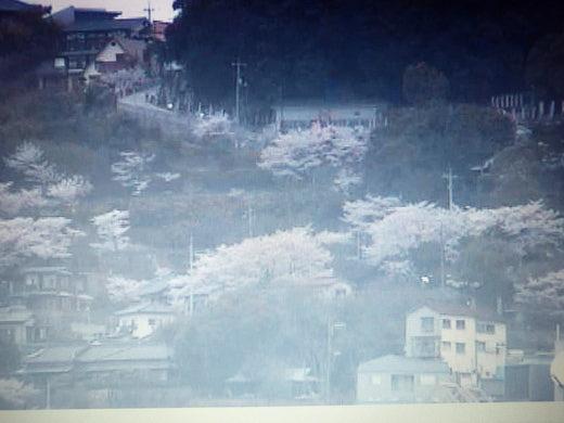 2012 尾道画像 003.jpg