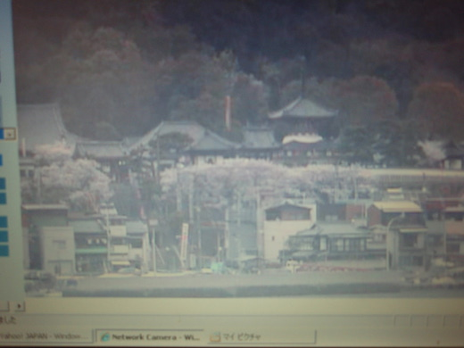 2012 尾道画像 007.jpg