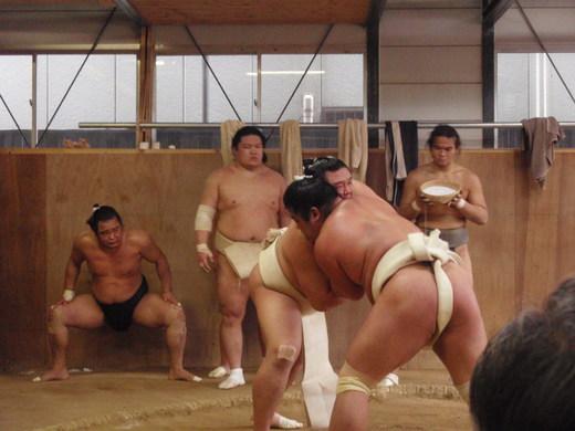2012 相撲朝稽古 030.jpg