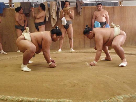 2012 相撲朝稽古 032.jpg
